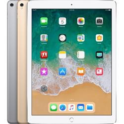 12.9-INCH IPAD PRO (A1671) WI-FI + CELLULAR 2ND GEN - 256GB