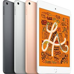 iPad Mini 5th Gen Wi-Fi + Cellular (A2126) - 64GB